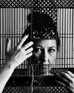 Caged Birg Sings - detail