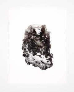 "Driven Snow #8489 Pigment ink print 22""h x 17""w 2011"