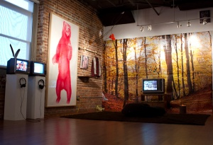 Installation View: M.F.A. Thesis Quest, HUB-BUB Showroom Gallery, Spartanburg , SC, July  2011