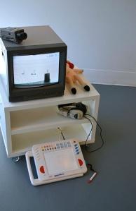 """""""1995""""  Multimedia Installation"""