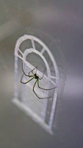 """Mason House."" (detail) Laser-cut plexiglass, Venusta Orchard Spider, webs. 17"" x 13"" x 17."" 2013."