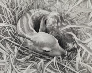 """05/13/2012 7:08 AM"" 2012 graphite on paper 19 x 23.5 inches"