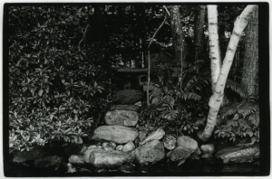 "Untitled, Silver Gelatin Print, 16"" x 20"", 2013"
