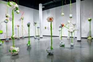 BRAIN FRUIT - MIXED MEDIA INSTALLATION 2011