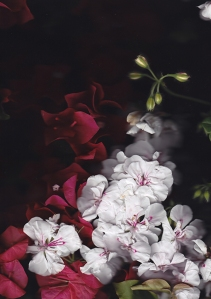 "Project 1: Bougainvillea at Magic Hour, Contact-scan photographs, 8.3"" x 11.7"", 2013–Ongoing."