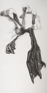 The Curious State, Charcoal on Paper, 68 by 36 in, 2012