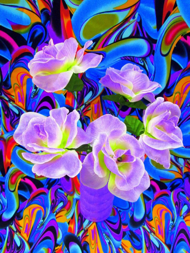 "Can You Dig It? A Chromatic Series of Floral Arrangements (Purple), digital print on metallic paper, 30""x40"", 2014"