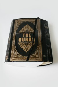 """Father Abraham had Two Sons An english translation of the Quran and an english translation of the Bible 2""""x10""""x12"""" 2014"""