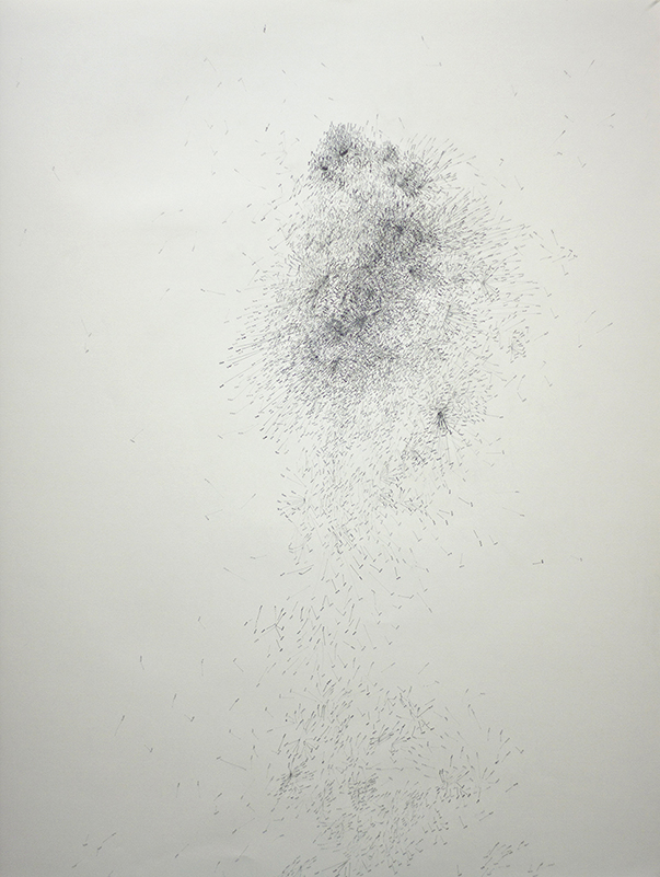 "gathering evidence on ones trace (5900) , 51.5"" x 42"", ink, graphite,, 2013"