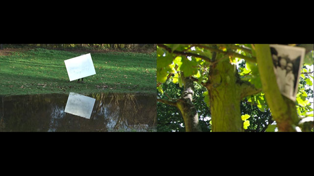 detail shot of Satisfaction video, 2014, video still