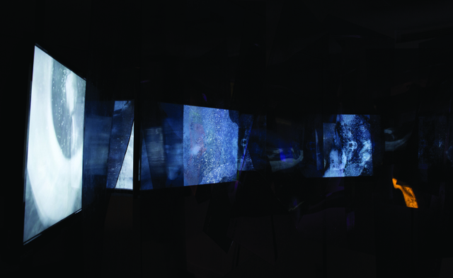 Evolver (detail of video installation), video installation, 8'x8'x8', 2014