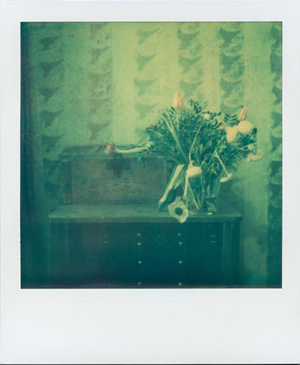 9.-Detail-Polaroid-Segments-of-substantiality