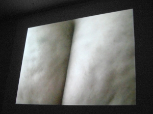 After Yoko Ono Bottoms...BUTt, Video Installation, 9 min., 2010 - 2008.