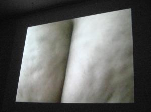 After Yoko Ono Bottoms...BUTt, Video Installation, 9 min., 2010 - 2008.