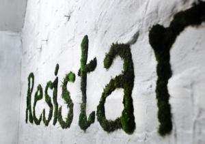 Resistance Point, moss graffiti installation, 120cm x 200cm, 2013 (Detail shot)