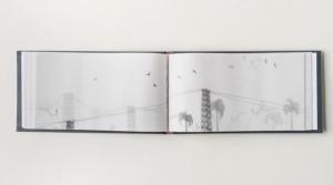 Migration - inkjet printing on vellum - 12x22cm - 2014