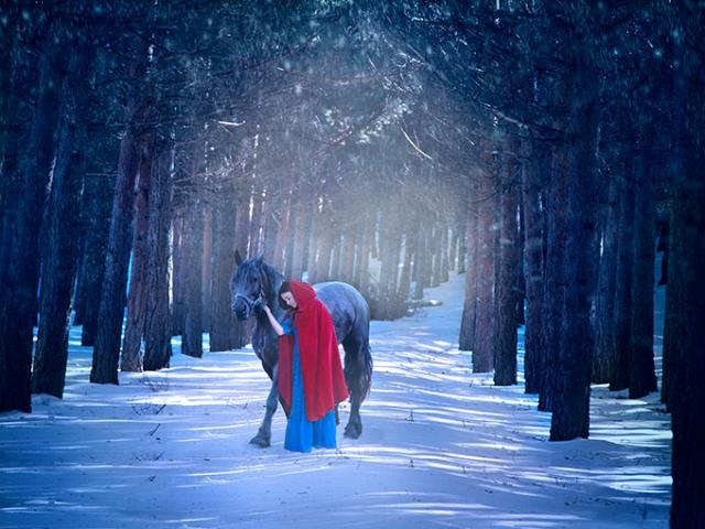 Snow white. 40x30 cm digital photograph. February 2015