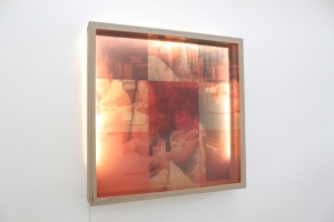 Family Dinner in Sequence of Red 36''x6''x36'', 2015 Birch wood box holding two plexiglass panes with inkjet printed transparencies mounted to each.