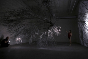 Within The Mystery Are Answers to the Unknown. 36' Siberian Elm tree, wire, flashlights. Satellite Gallery, Lubbock, Texas. 2014.