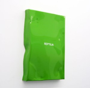 Reptilia,-2015,-paint-on-aluminium,-20x30x3-cm